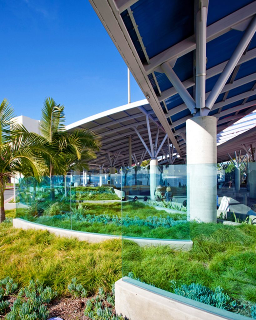 Plants, transparent glass and grass surrounding Carnival Cruise terminal